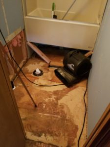 sewage backup cleanup Milton DE